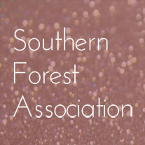 Southern Forest Association